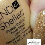 cndshellac_tinseltoast_holiday2012