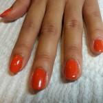shellac_orange